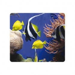 "MOUSEPAD SOTTO IL MARE ecologici Earth Seriesâ""¢ Fellowes"
